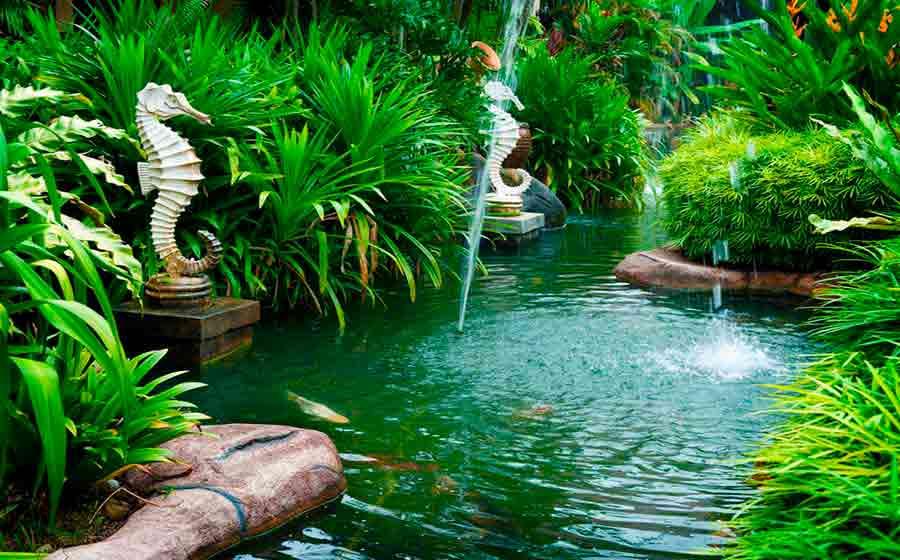 O feng shui no jardim import ncia e dicas de aplica o for Como practicar feng shui