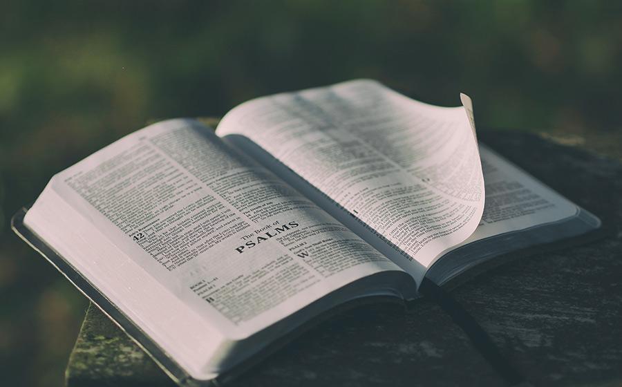 Salmos De Proteção Confira Aqui O 3 Melhores Iquilibrio