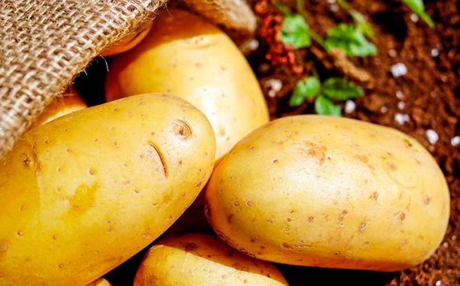 simpatia com batata