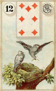 carta os pássaros