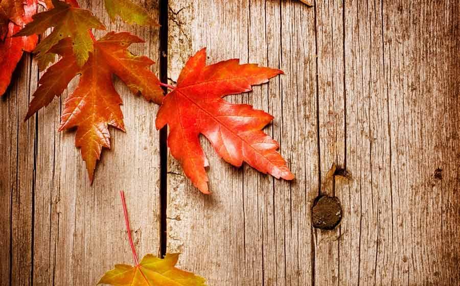 ritual de outono