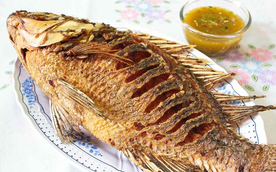 sonho com peixe frito