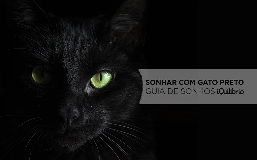 sonho com gato preto