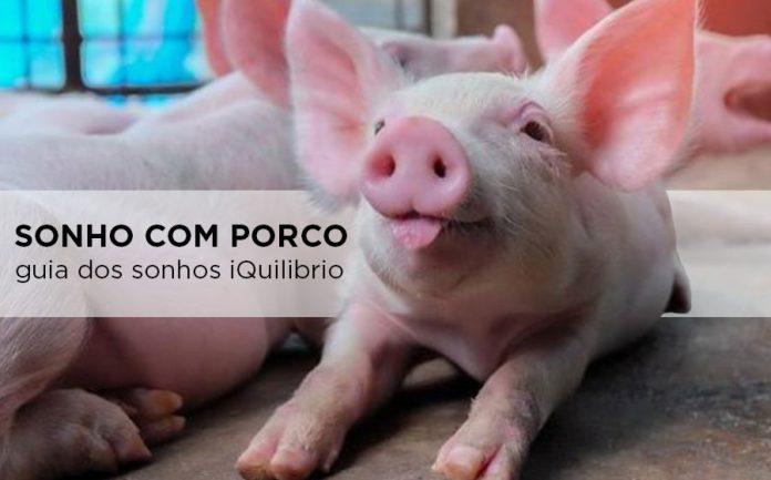 sonho com porco