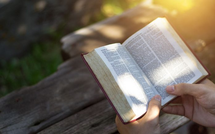 36 salmo estudo